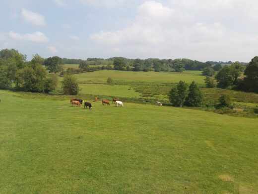 Great views over the open fields